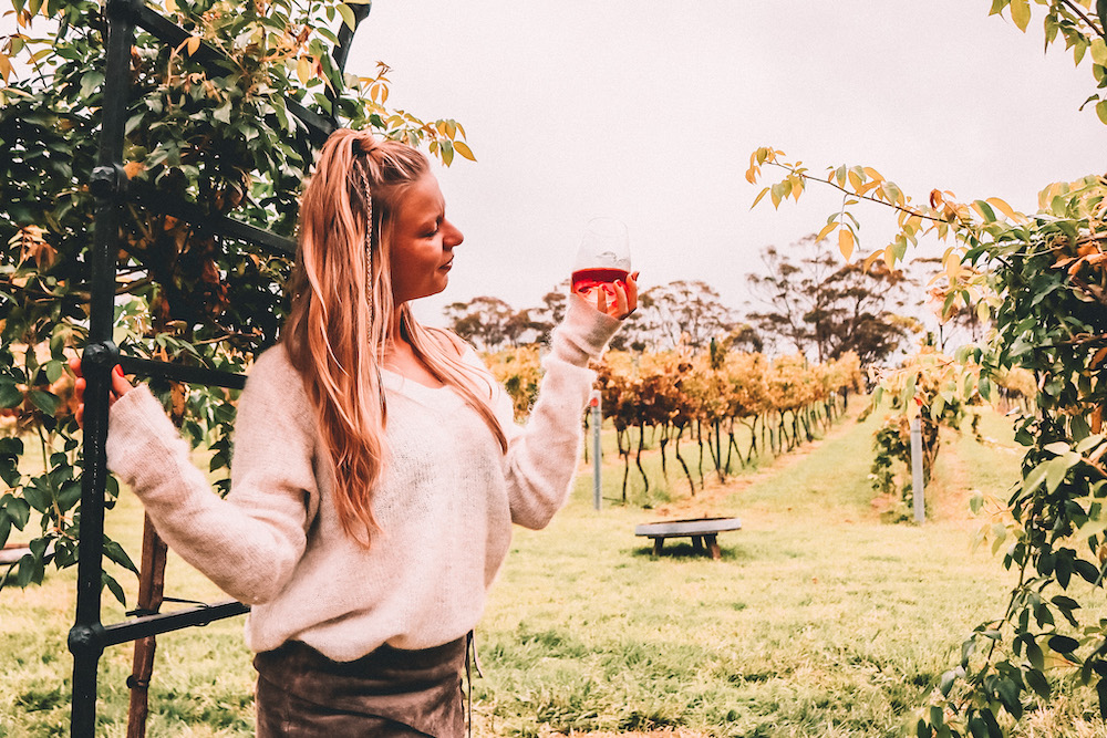 The Wine Wench Collaboration Guide To The Best Southern Highlands Wineries