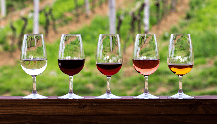 A guide to Hunter Valley wine tasting: visit wineries and cellar doors